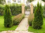 Зеленая изгородь садового участка